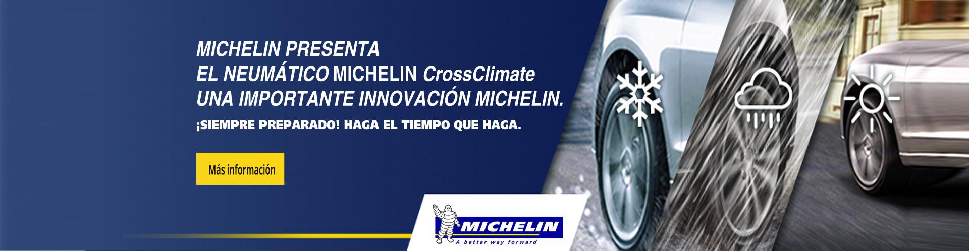 ruedas-michelin